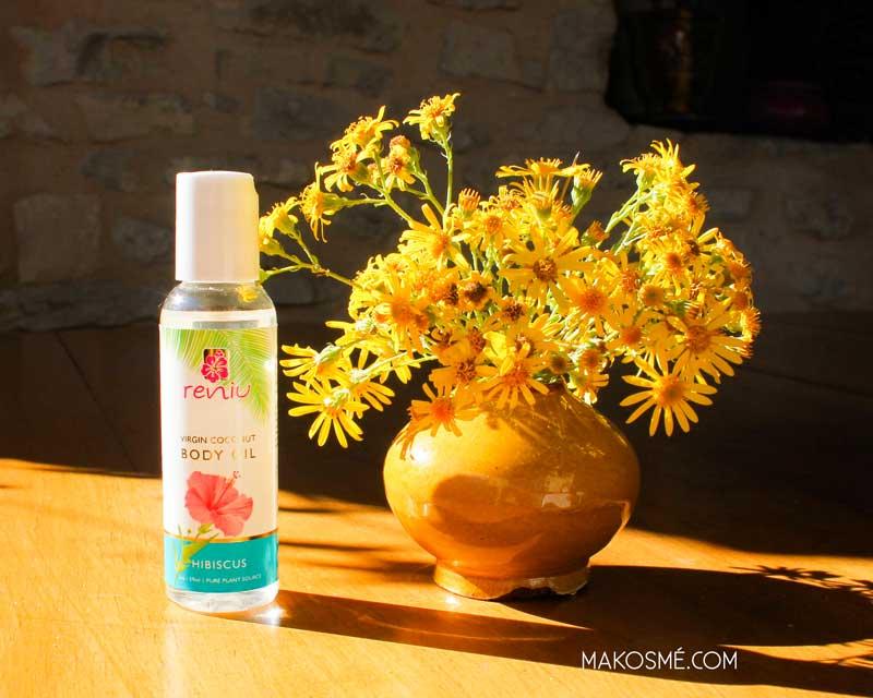 Soleil dedans, hiver dehors: l'hibiscus, la plante à découvrir